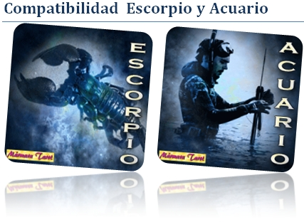 Compatible escorpio con acuario